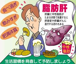 脂肪肝.png